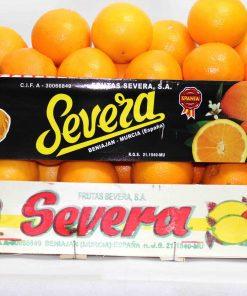 Saftorangen Valencia 2